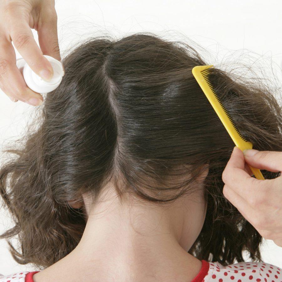 Как вывести вшей с длинных волос