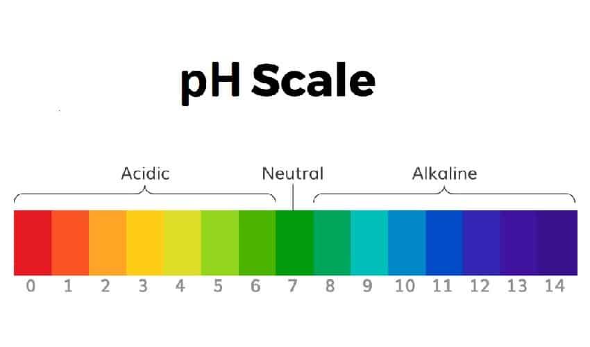PH шампуня для волос