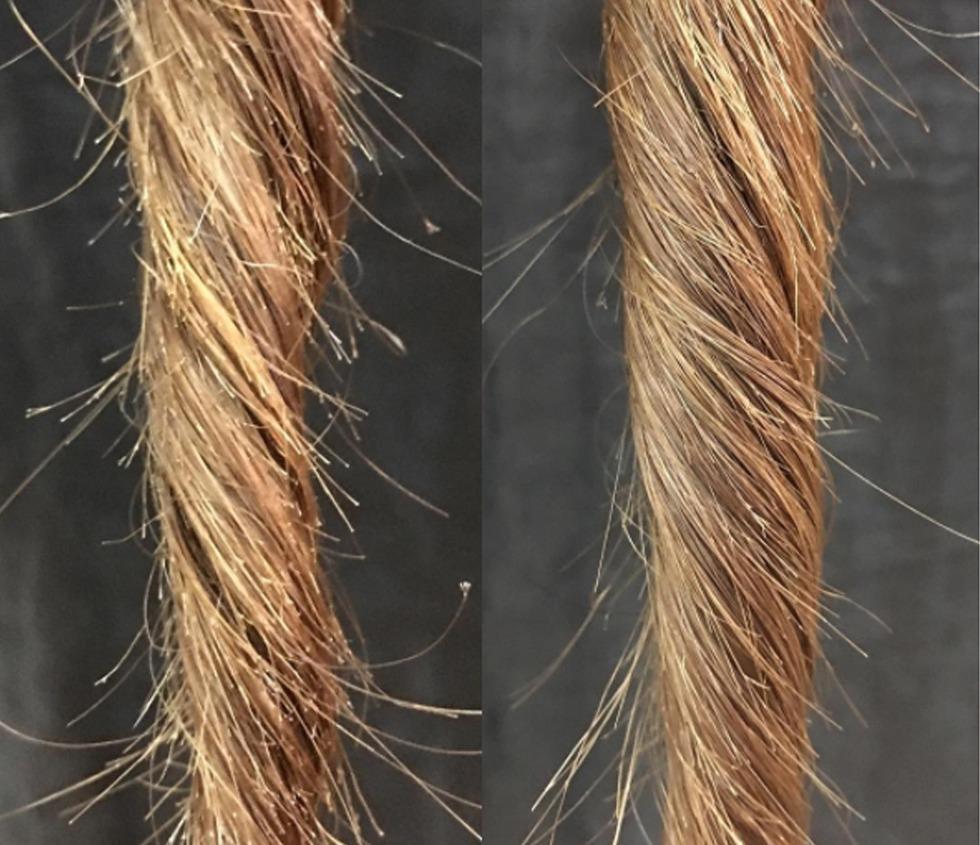 Почему ломаются волосы на голове у женщин