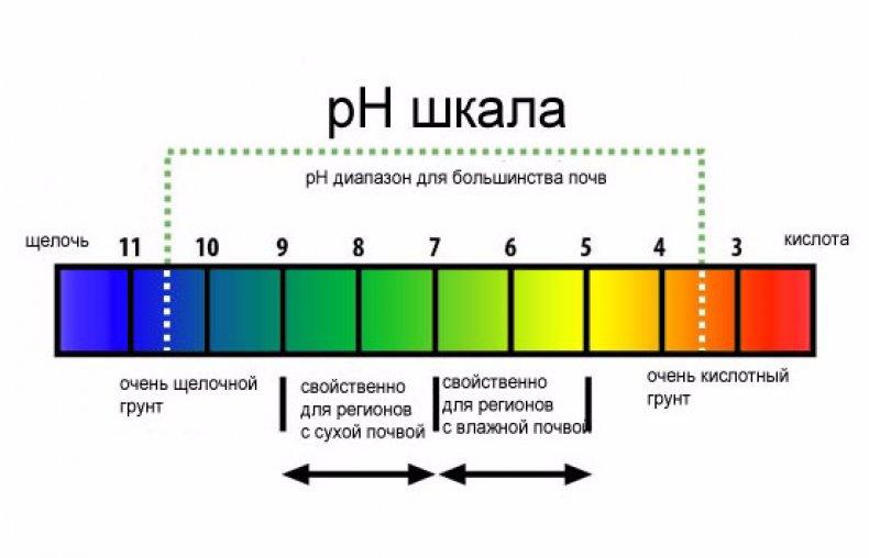 бальзам с кислой средой, ph 5,5