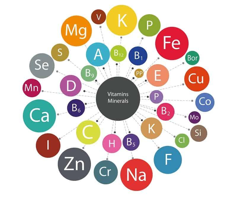 миниатюризации волос витамины