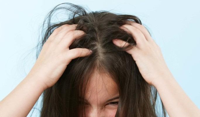 поможет ли окрашивание волос от вшей