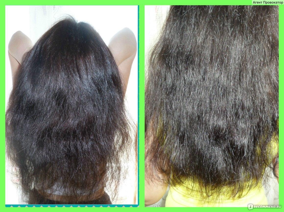 Прополис для волос отзывы