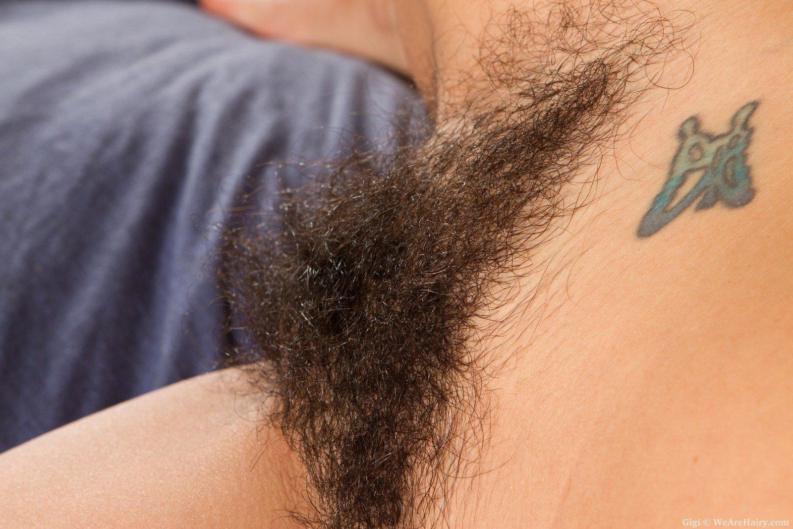 Курчавость волос на лобке