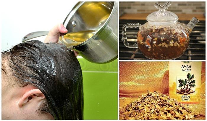 Как заварить кору дуба для волос