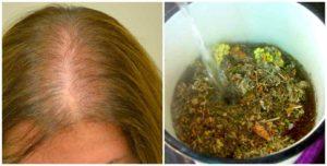Настойки для сухих истощенных волос и тонкой кожи головы