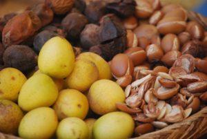 плодов арганового дерева