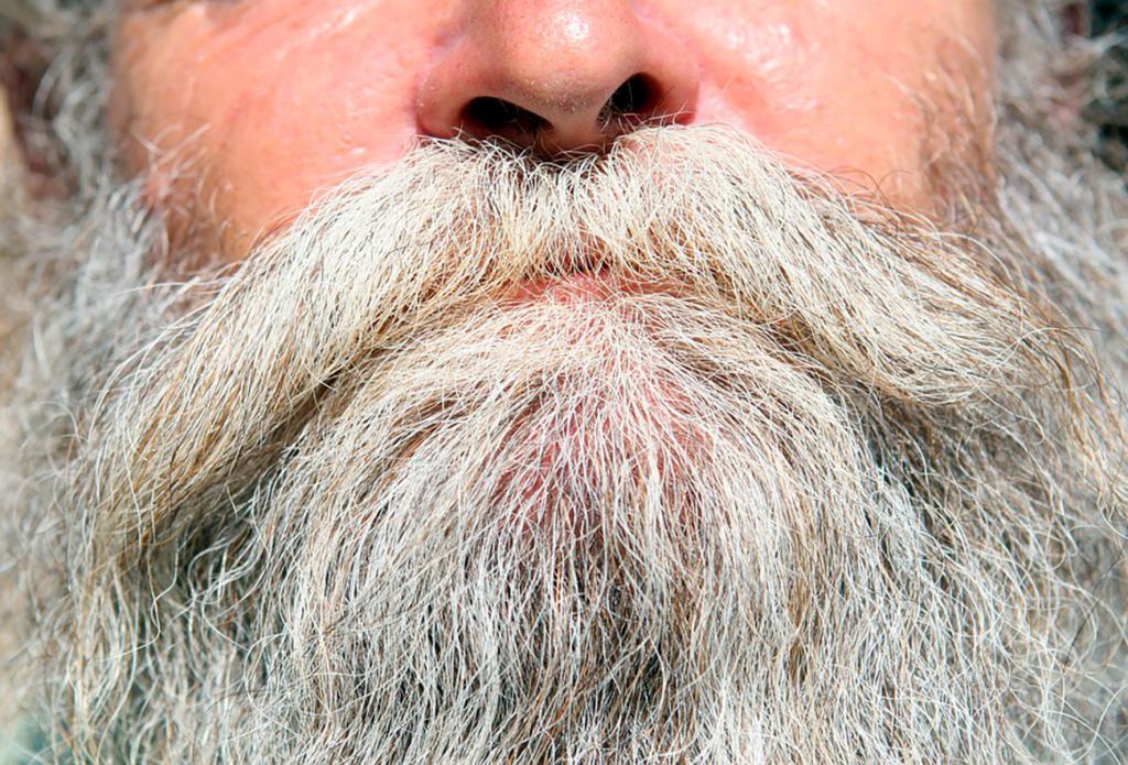 История бороды в мире