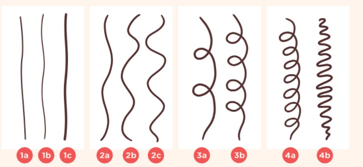 классификация типов волос