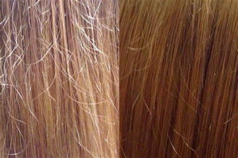 Восстановить кончики волос в домашних условиях