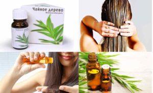 Рецепты с маслом для волос чайного дерева
